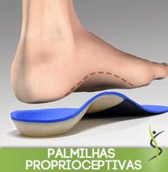 palmilhasproprioceptivas
